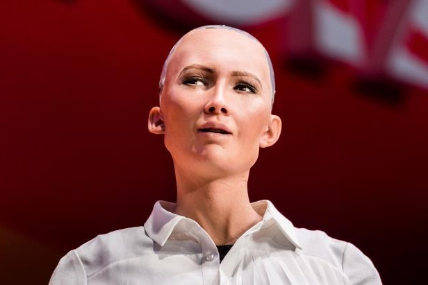 a-person-posing-for-the-camera-sophia-the-robot-robot-of-hanson-robotics-attends-the-day-2-of-the-ri_169373_