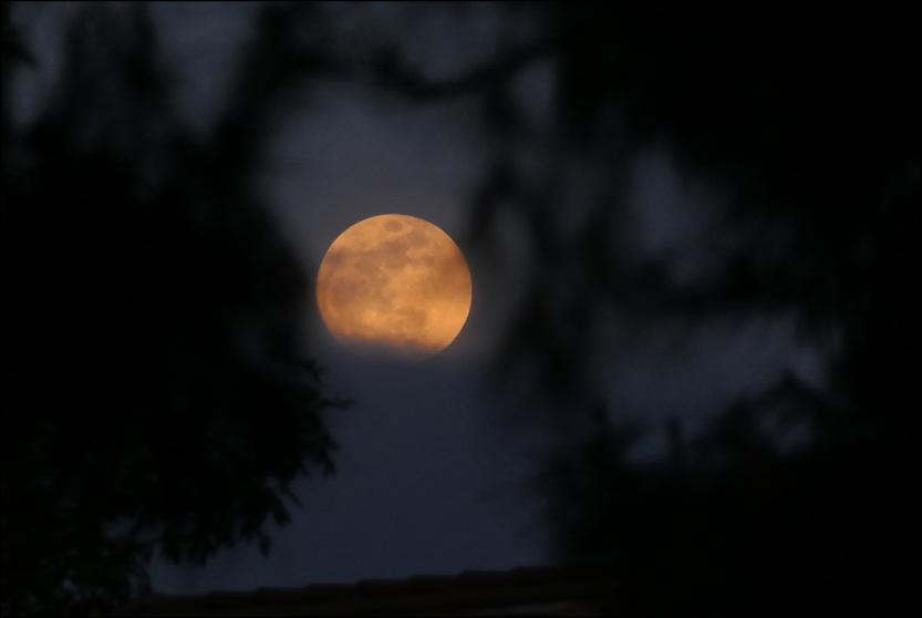 blog_lunar_eclipse_2018_01_31_1.jpg