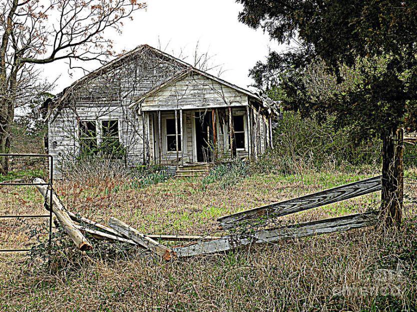 abandoned-property-kathy-white.jpg